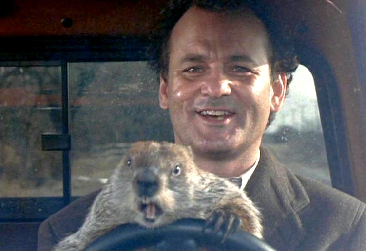 groundhog-day-driving
