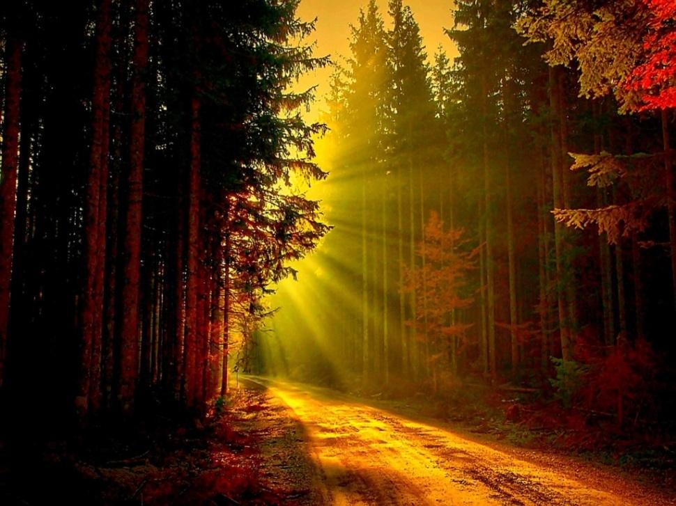 light-path-2